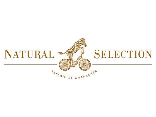 Natural-Selection.png