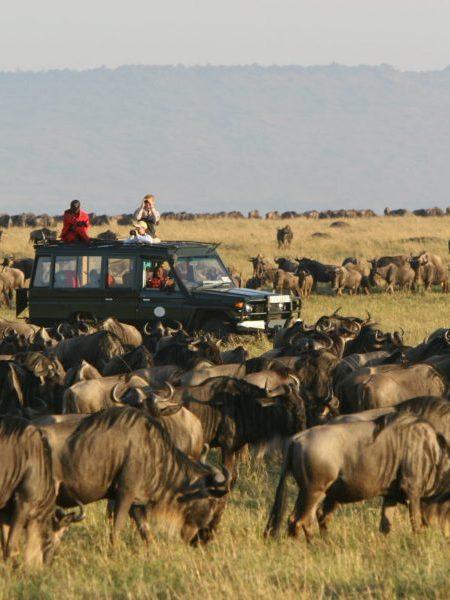 Tanzania Photographic Expedition  9 Days