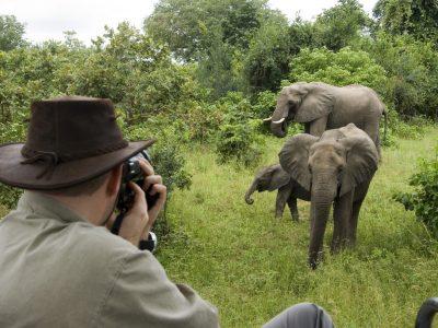 Zambia and Malawi Photographic Safari