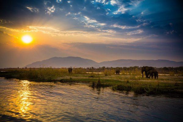 Lower Zambezi Sunset