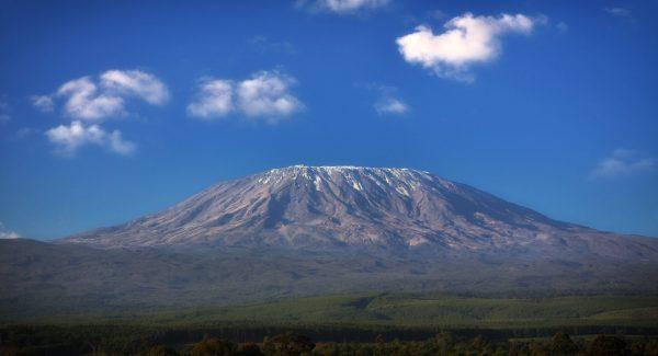 Kilimanjaro Adventure - 8 Days
